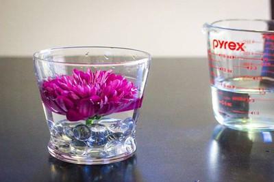Nghệ thuật cắm hoa trong nước