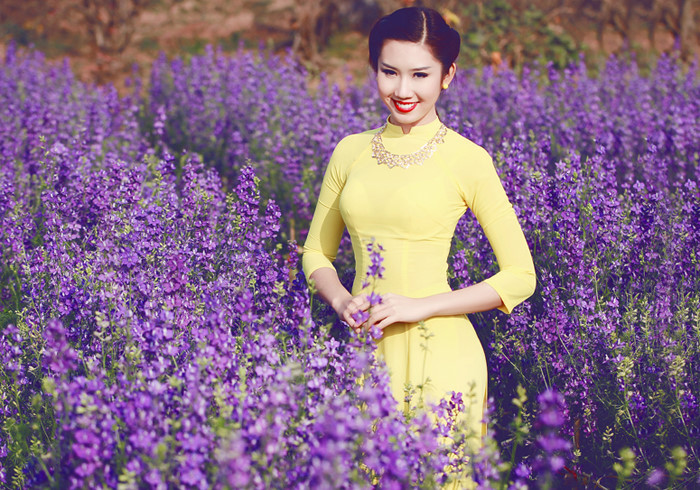 Sự tích hoa violet