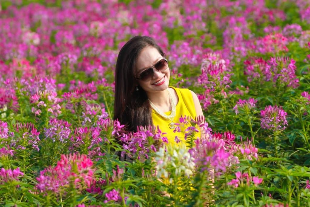 trồng cây hoa hồng ri