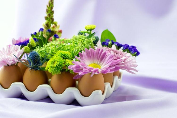 Mách bạn cách cắm hoa từ quả trứng