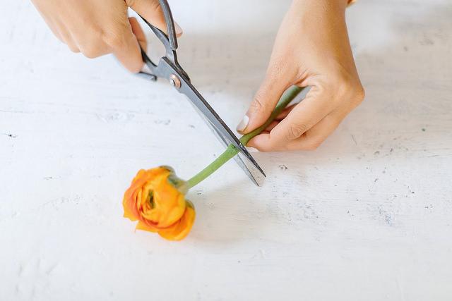 Nghệ thuật cắm hoa trong hộp