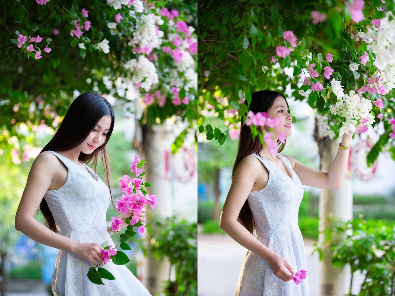 Thơ hay về hoa giấy