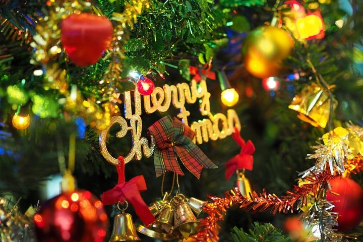 Top những loại hoa Giáng sinh trang trí bàn tiệc không thể thiếu