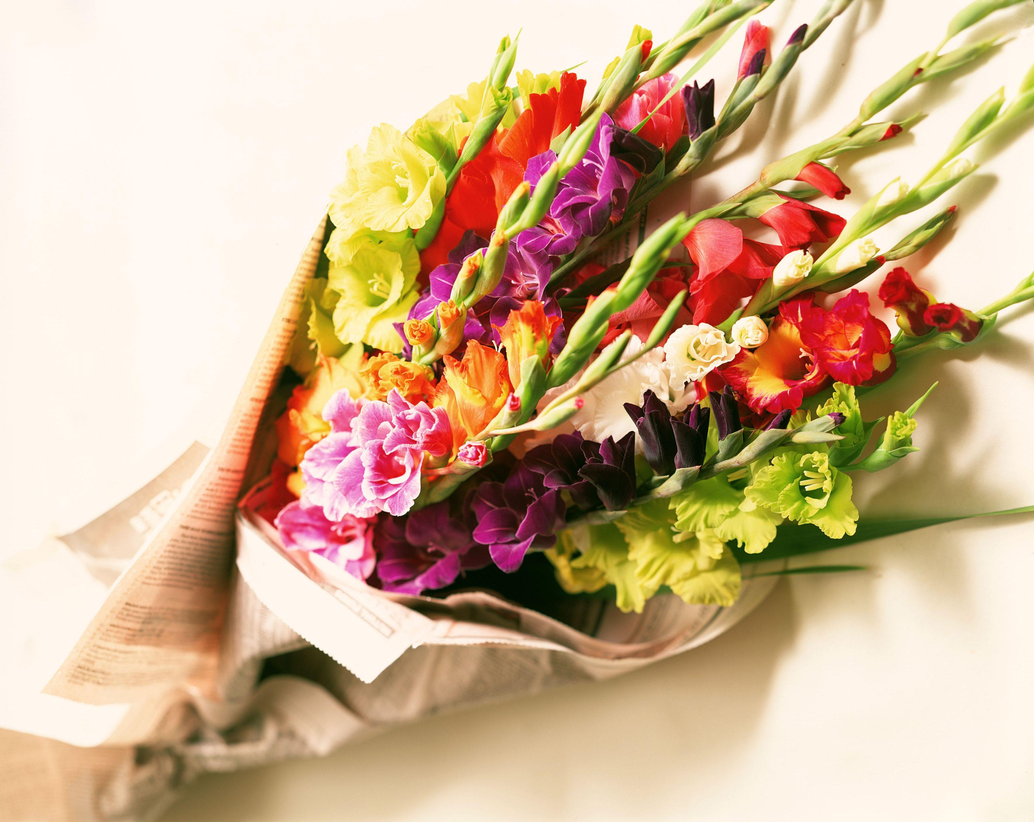 Mách bạn cách chọn hoa 8/3 cực kỳ ý nghĩa