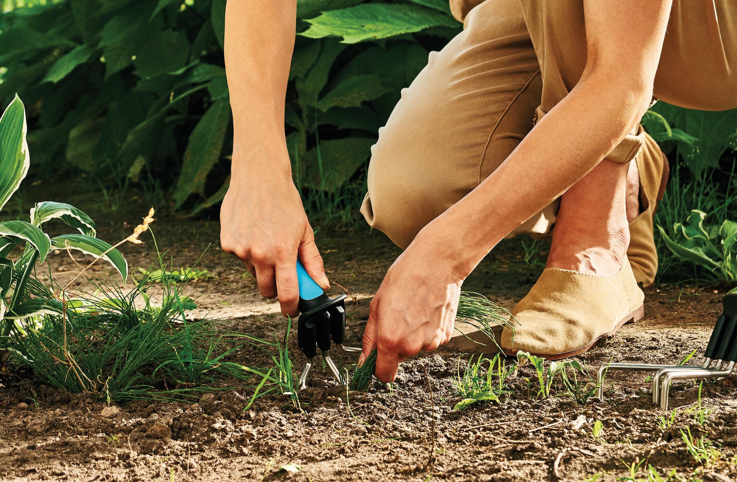 Cào làm vườn mini cao cấp Cellfast