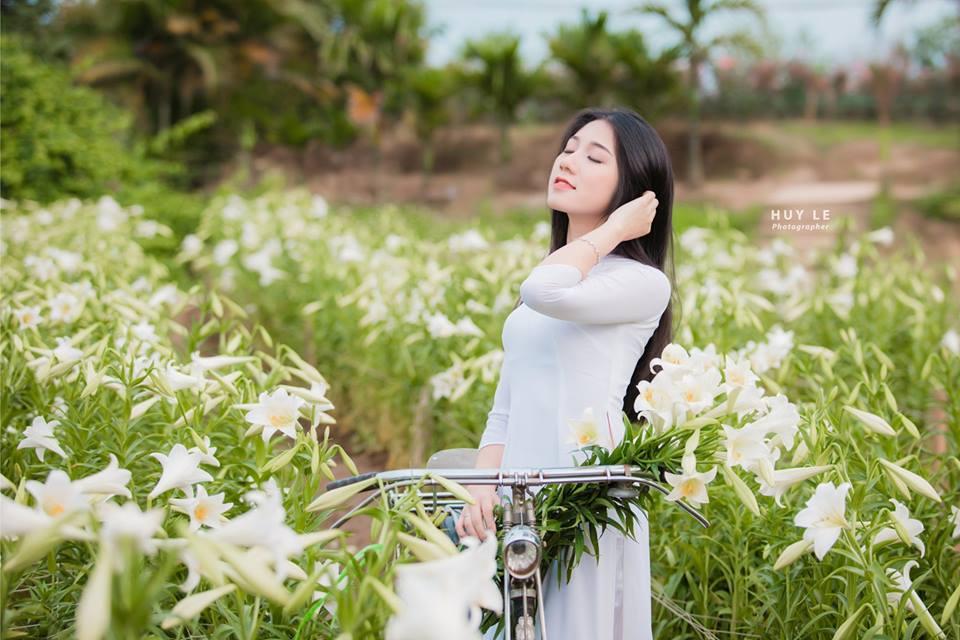 Ý nghĩa hoa lily biểu tượng sự trong trắng tinh khiết