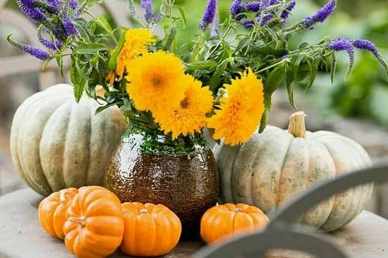 Tiết lộ 6 cách thức phối hoa đẹp