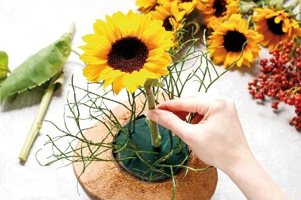 Cắm hoa hướng dương trong vỏ dừa