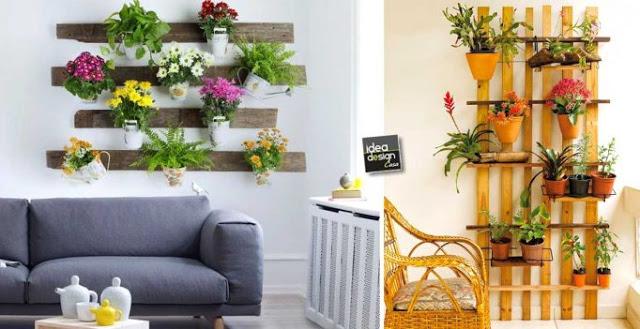 Trang trí nhà bằng chậu hoa treo tường đẹp bắt mắt