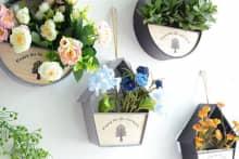 Trang trí nhà bằng chậu hoa treo tường