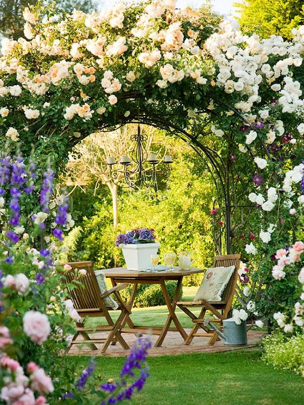 Ngất ngây với những giàn hoa hồng leo đẹp
