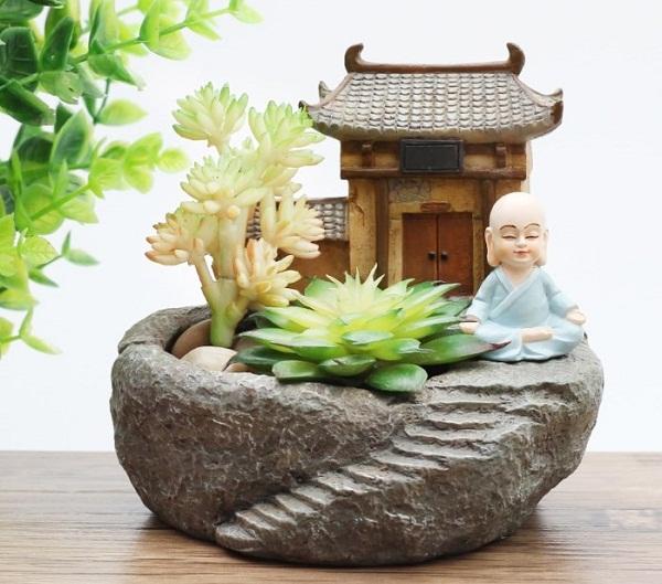 Ý nghĩa hoa sen đá trong phong thủy