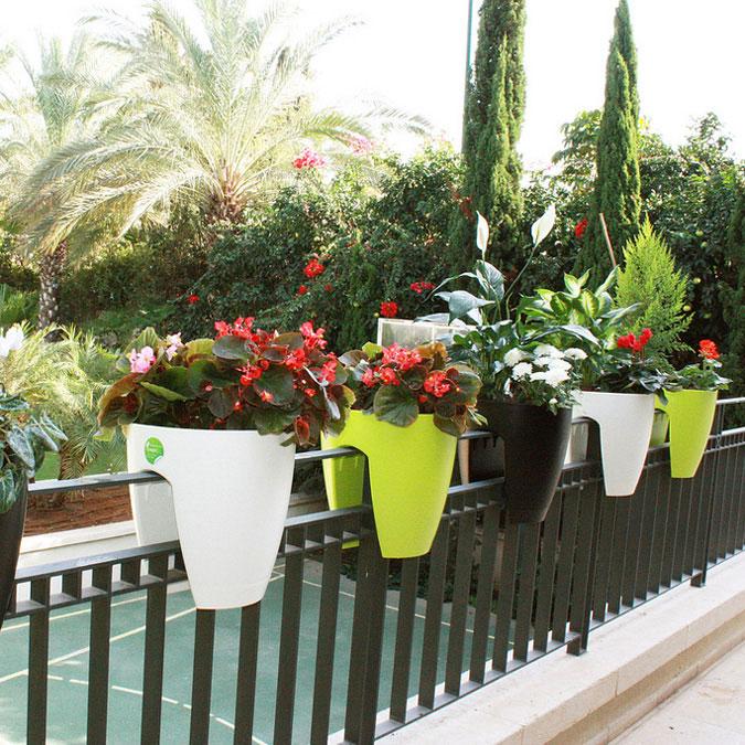 Bí quyết trồng hoa ban công chung cư tuyệt đẹp