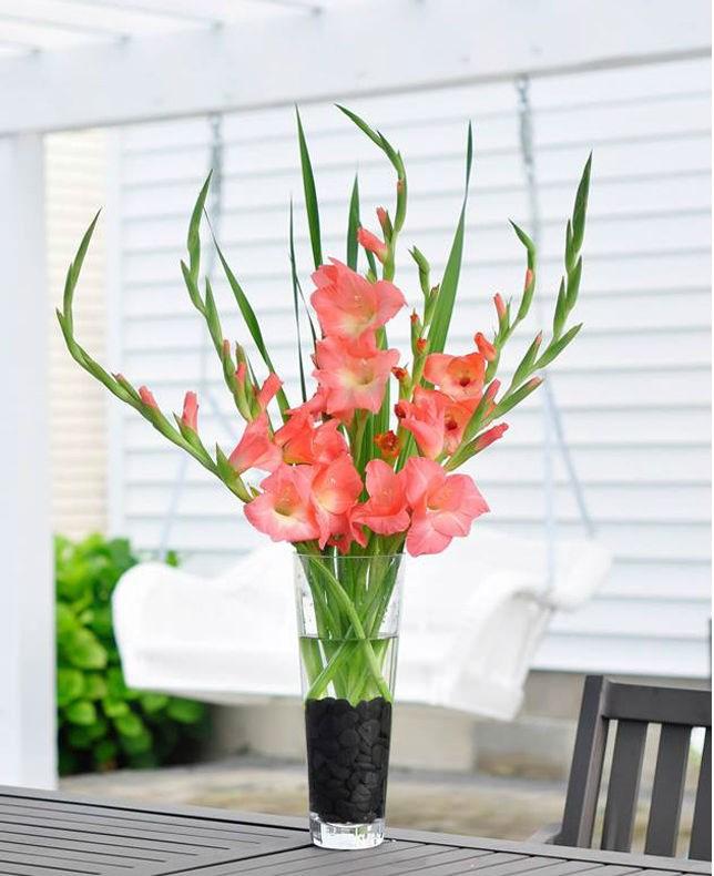 10 tuyệt chiêu cắm hoa để có bình hoa đẹp