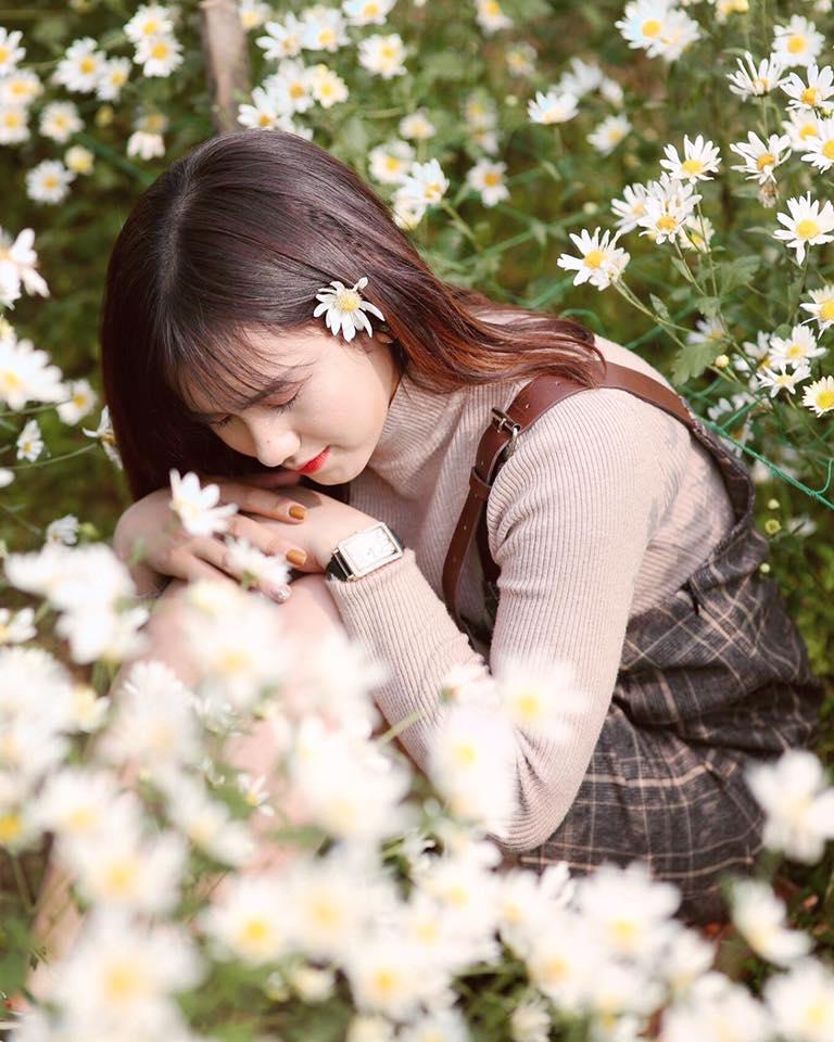 Ý nghĩa của hoa cúc họa mi trong tình yêu thầm lặng