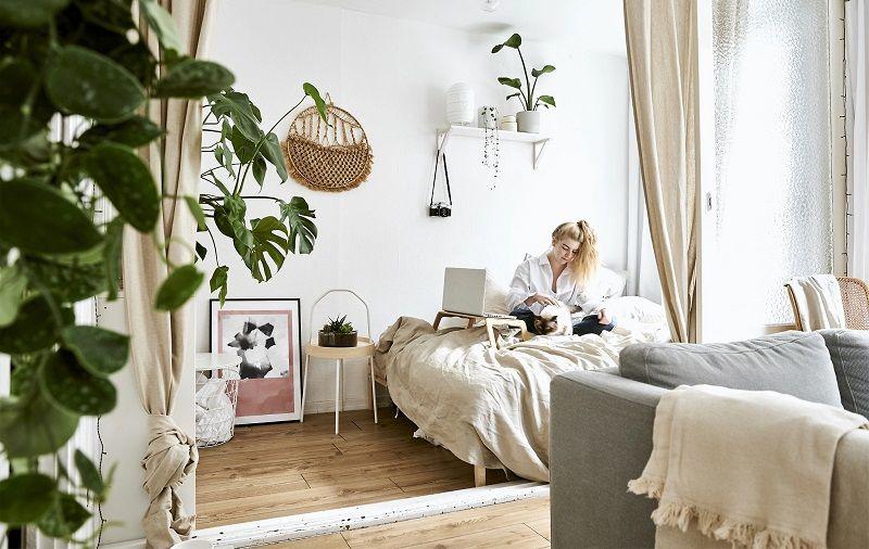 7 loại hoa đặt trong phòng ngủ cải thiện chứng khó ngủ