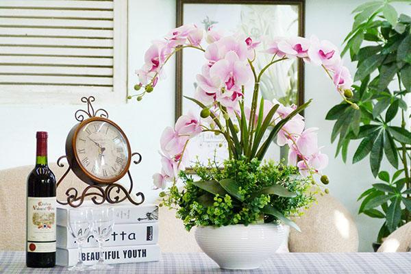8 loại hoa văn phòng hợp phong thủy mang may mắn, tài lộc