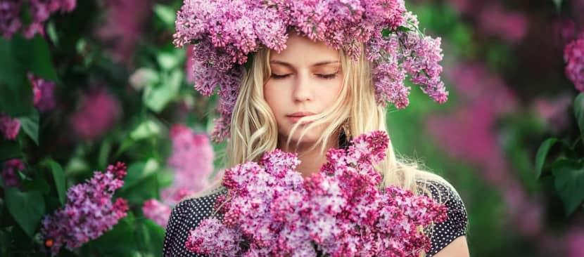 Ý nghĩa hoa tử đinh hương cảm xúc đầu tiên của những rung động đầu đời