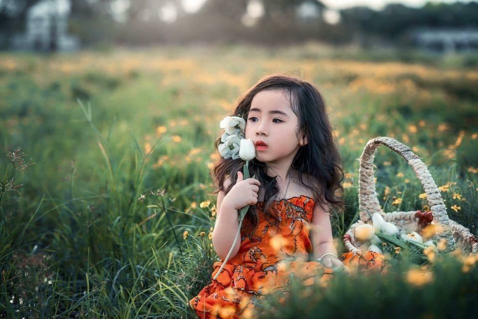 Ý tưởng đặt tên con gái hay nhất theo phong thủy các loại hoa