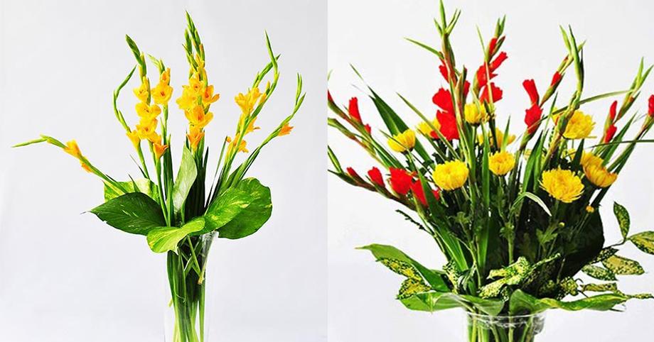 Hoa lay ơn mang điềm lành đến cho gia chủ