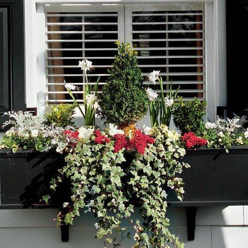 Cách phối hoa treo trang trí cửa sổ xinh lung linh