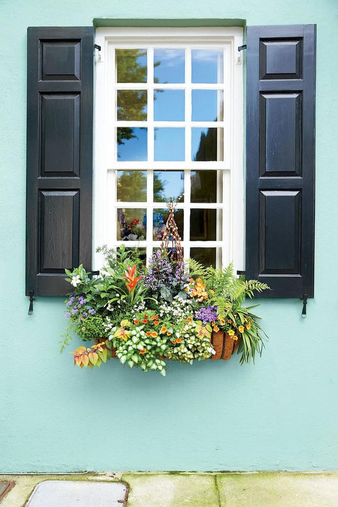 Hoa treo trang trí cửa sổ đơn