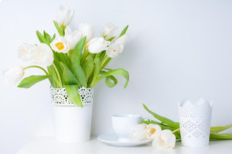 5 tác dụng khi cắm hoa tươi trong nhà mang lại năng lượng tốt;