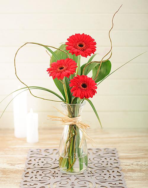 Khám phá 10 loại hoa màu đỏ rực rỡ mang may mắn ngày Tết