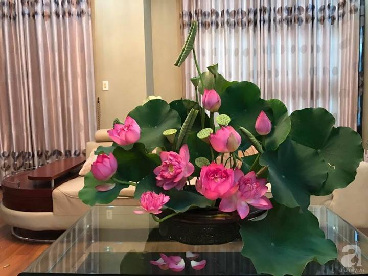 Trưng bày hoa sen trong nhà có tác dụng phong thủy tốt