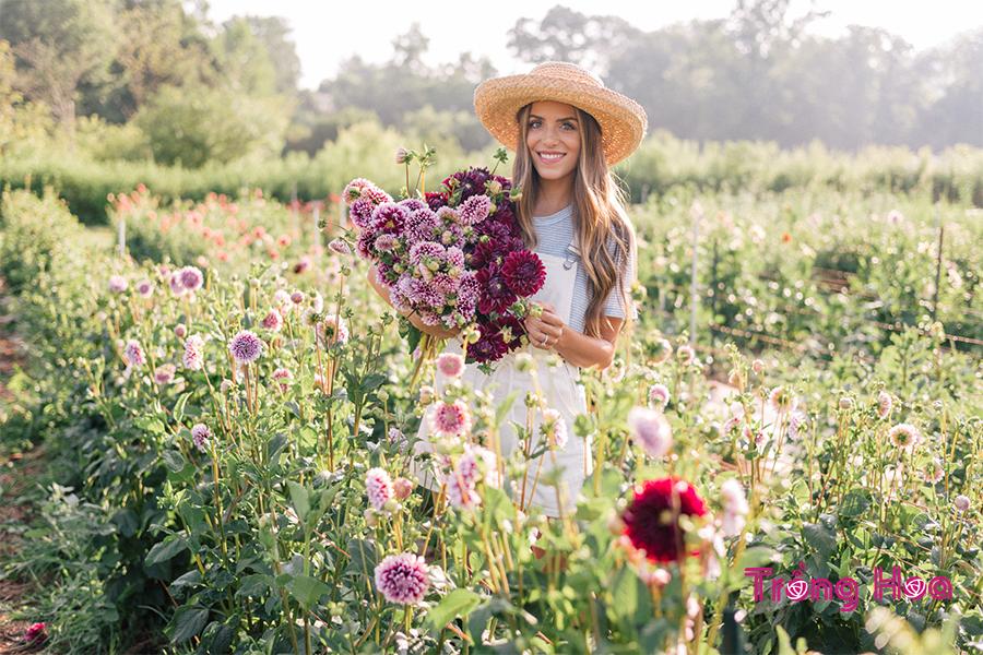 Hướng dẫn cách trồng hoa ngày Tết đón xuân về
