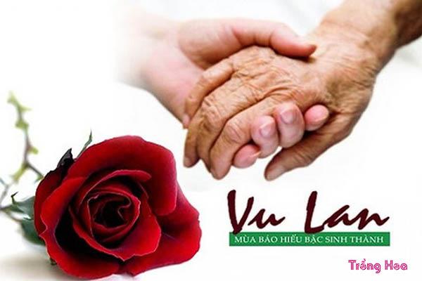 Cúng hoa gì vào ngày lễ Vu lan để bày tỏ lòng thành kính?