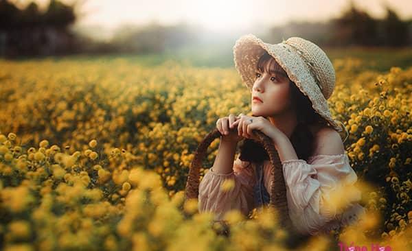 Top 7 loại hoa mùa thu đẹp nhất gây xao xuyến lòng người