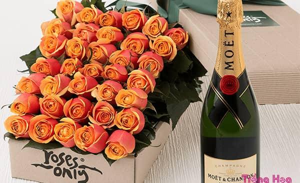 Tặng Hoa hồng cam ẩn giấu một tình yêu ban sơ trong sáng