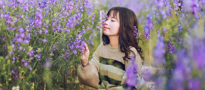Những bài thơ hay về hoa violet