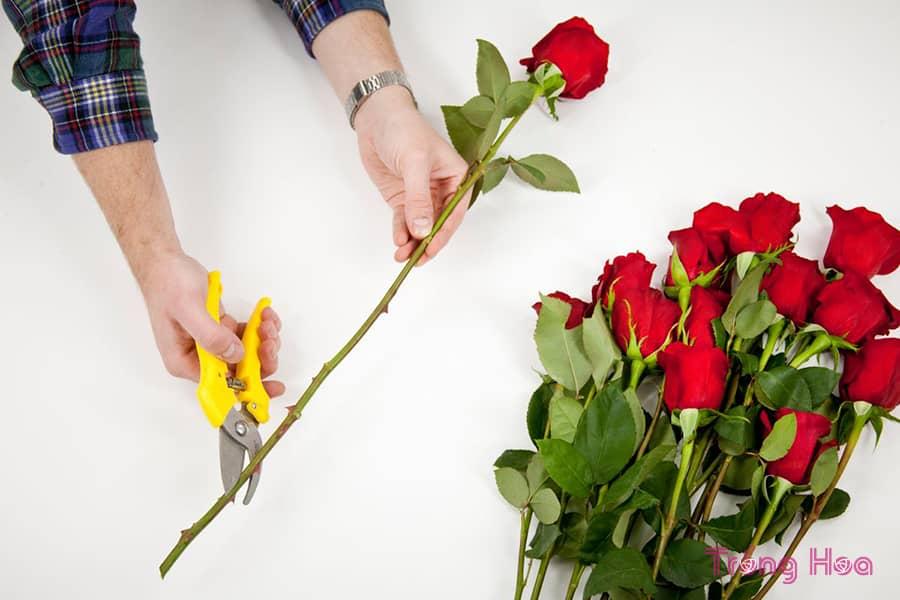 cách giữ hoa hồng tươi lâu ngày lễ tình nhân