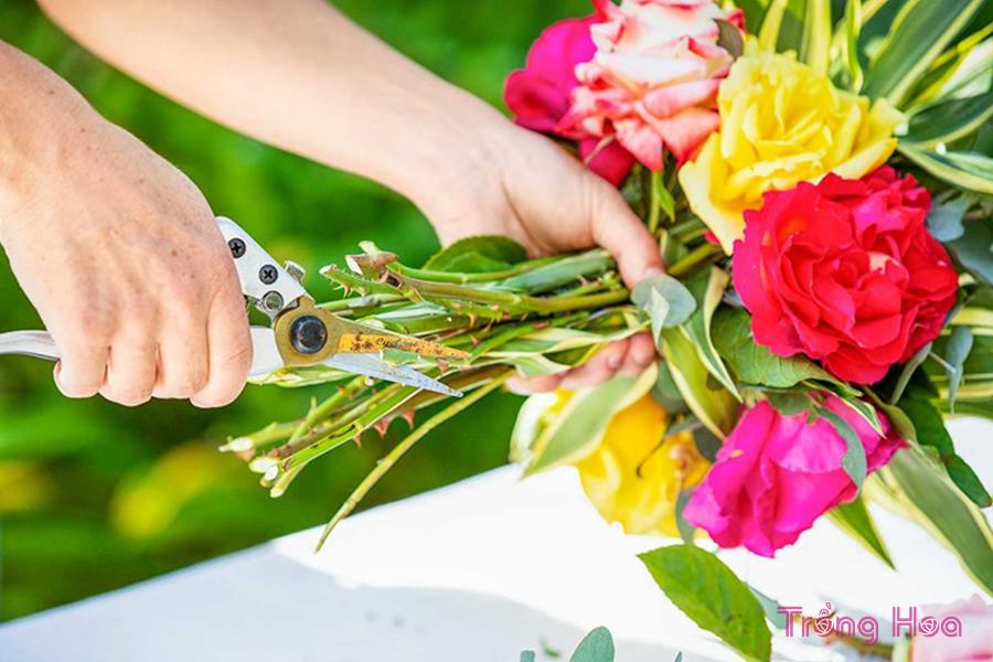 Cách bó hoa hồng tươi cắm bình