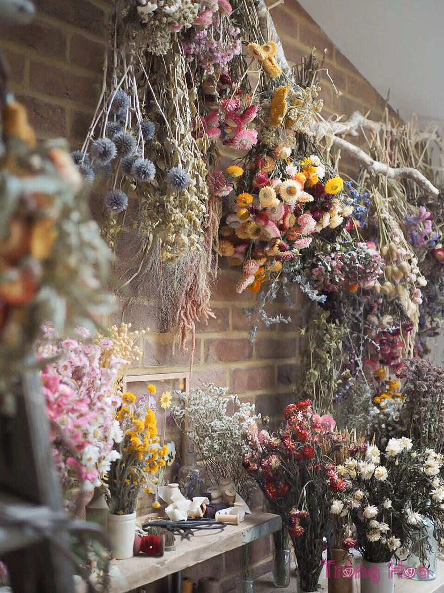 Cách làm khô và bảo quản hoa