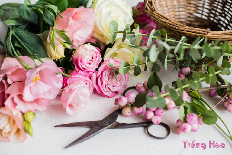 10 loại hoa cắt cành tốt nhất