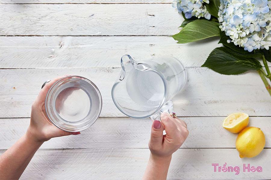 Cách tự làm nước cắm hoa giúp hoa tươi lâu hơn
