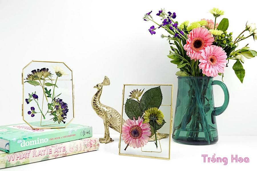 Cách tạo ra khung tranh nghệ thuật từ hoa ép